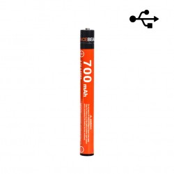 10900 ACEBEAM 700mAh battery rechargeable by Micro-USB cable